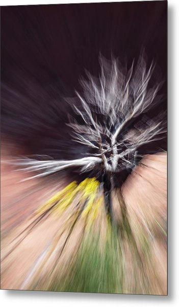 Rabbit Brush Bones Twist Metal Print