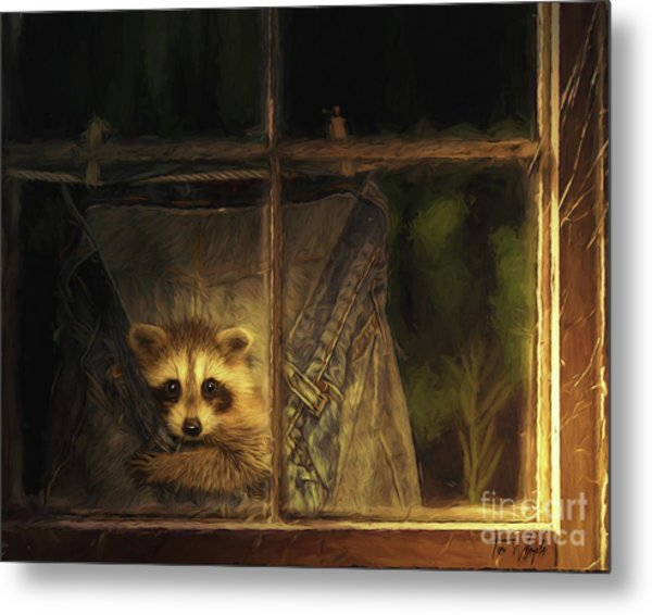 Raccoon Pants Metal Print