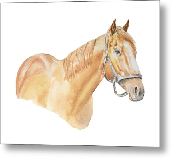 Racehorse Metal Print