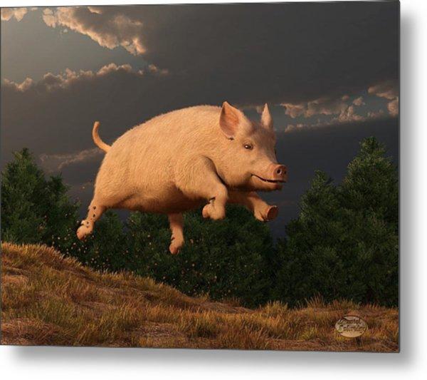 Racing Pig Metal Print