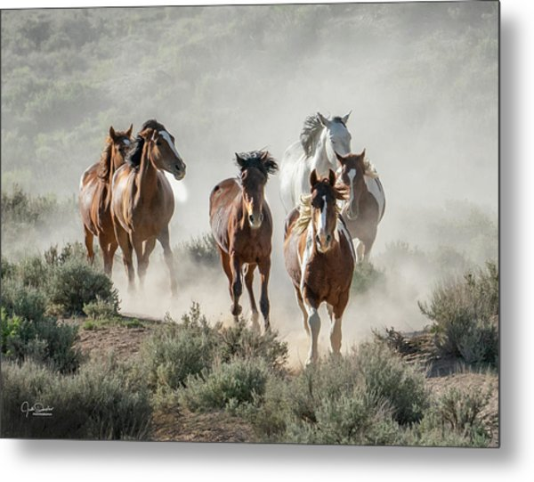 Racing To The Water Hole Metal Print
