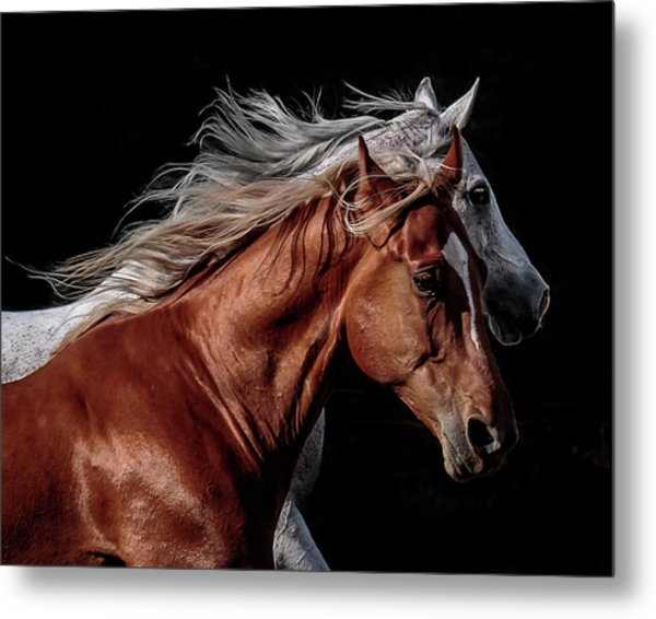 Racing With The Wind Metal Print