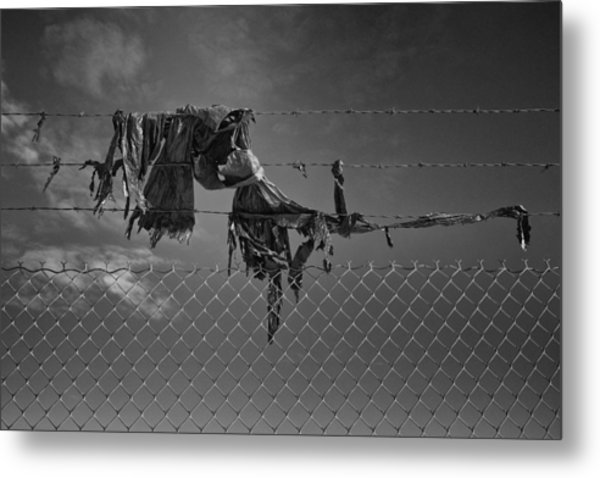 Ragged On A Fence Metal Print