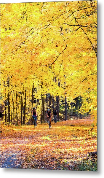 Autumn Glory On The Rail Trail Metal Print