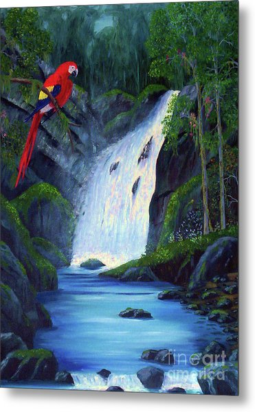 Rain Forest Macaws Metal Print