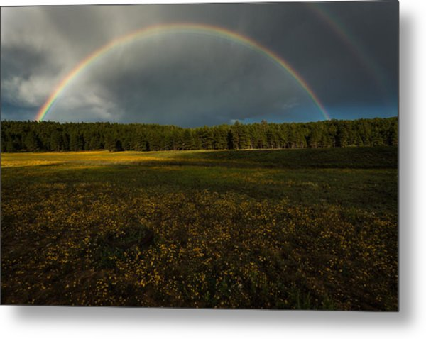 Rainbow Over The Forest Metal Print
