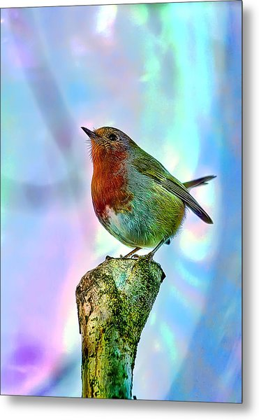 Rainbow Robin Metal Print