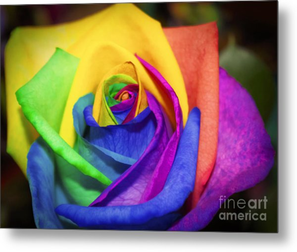 Rainbow Rose In Paint Metal Print