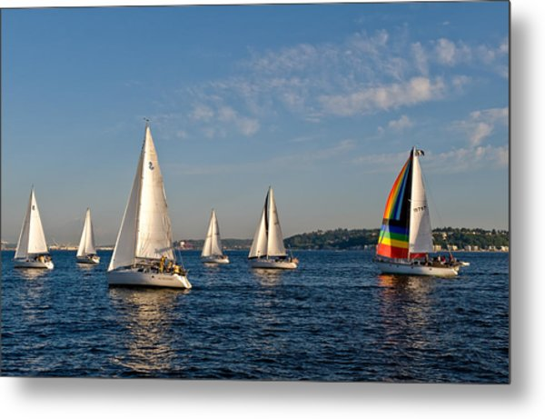 Rainbow Sails Metal Print by Tom Dowd