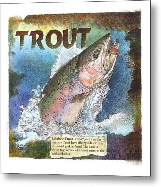 Rainbow Trout Metal Print
