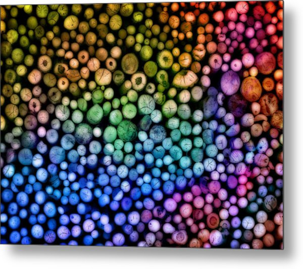Rainbow Wood Metal Print