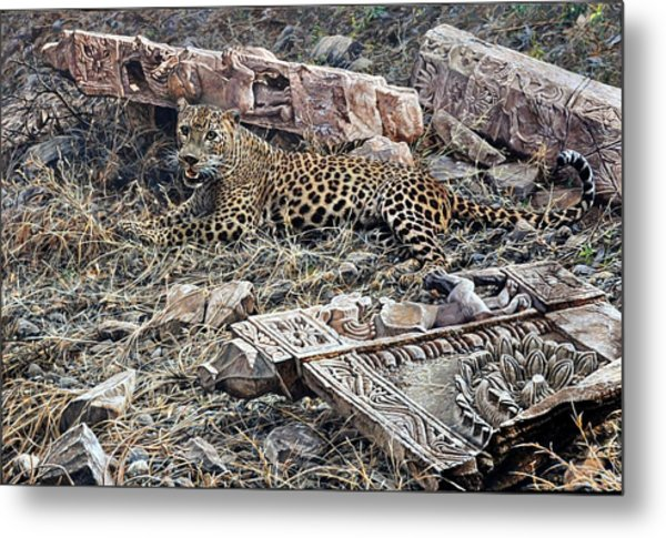 Ranthambore Apparition Metal Print