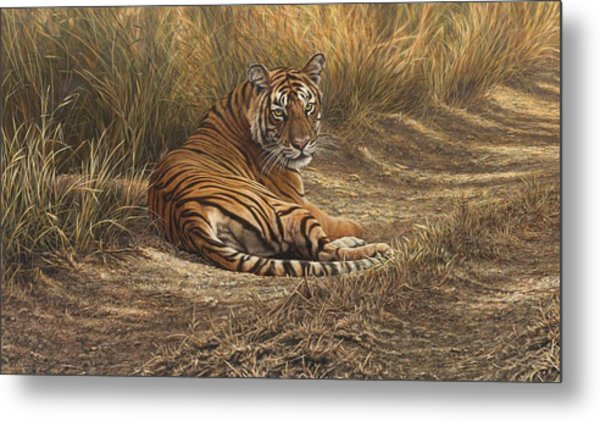 Ranthambore Roadblock Metal Print