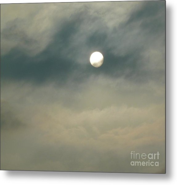Rare Moment Metal Print by Donna McLarty