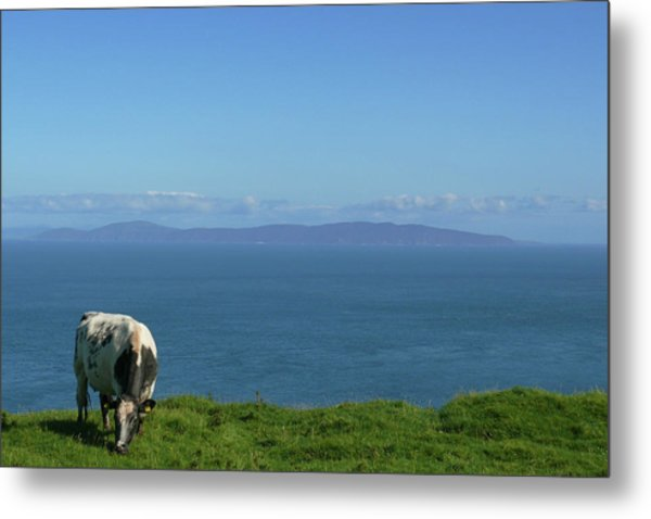Rathlin Island Metal Print
