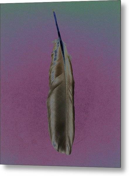 Raven Feather Metal Print