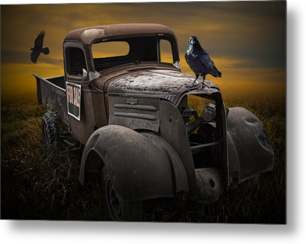 Raven Hood Ornament On Old Vintage Chevy Pickup Truck Metal Print