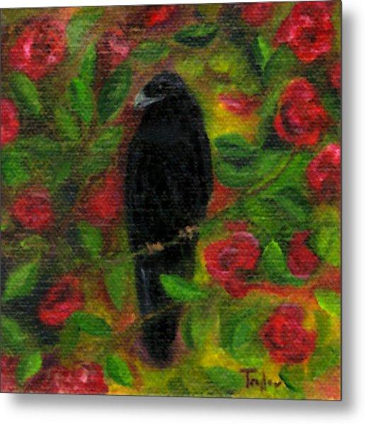 Raven In Roses Metal Print