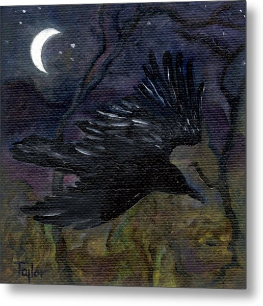 Raven In Stars Metal Print