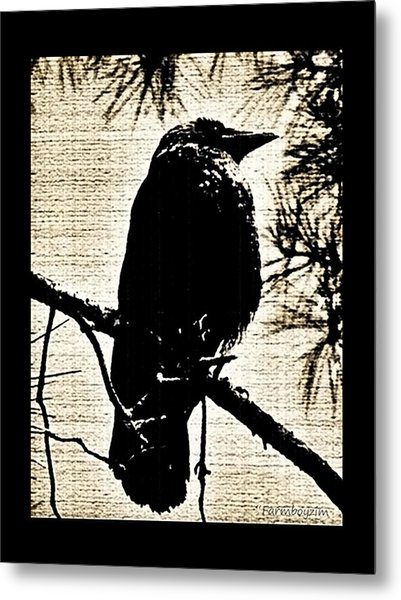 Raven On The Lookout Metal Print