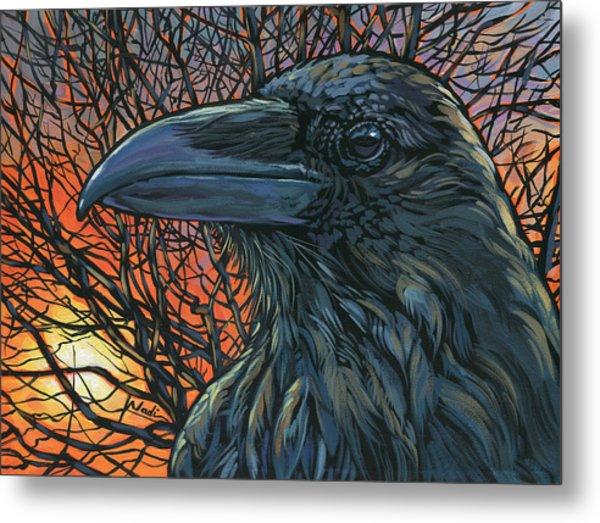 Raven Orange Metal Print