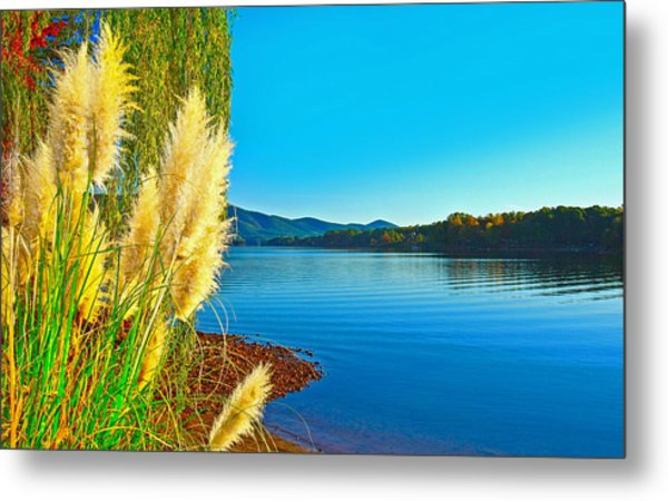 Ravenna Grass Smith Mountain Lake Metal Print