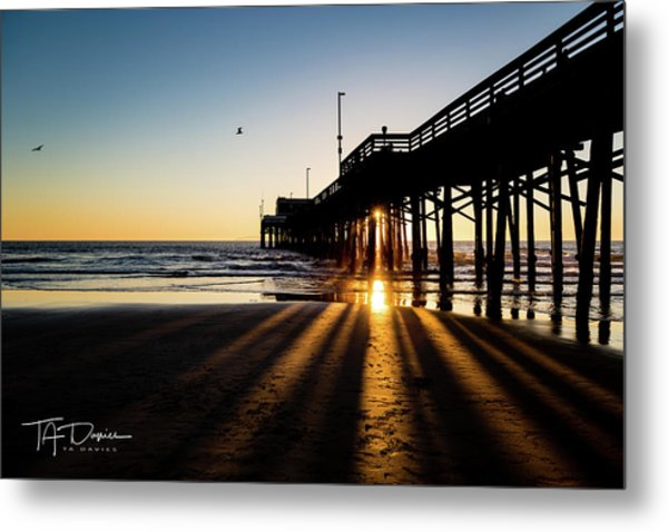 Rays Of Evening Metal Print