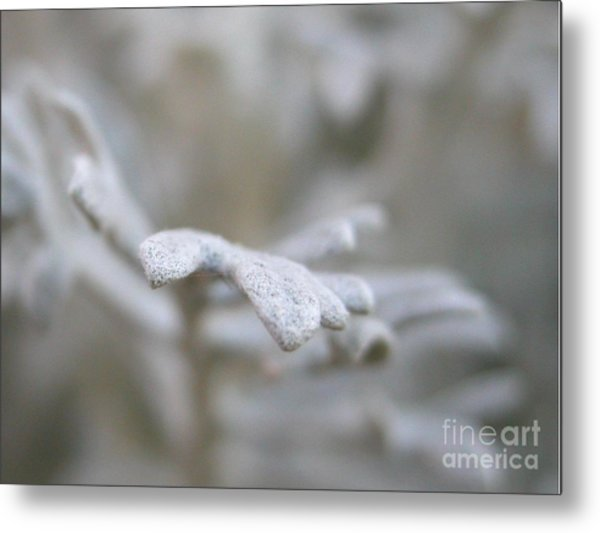 Reaching Out Metal Print by Michelle Hastings
