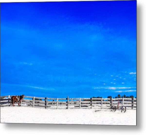 Ready For The Day Metal Print
