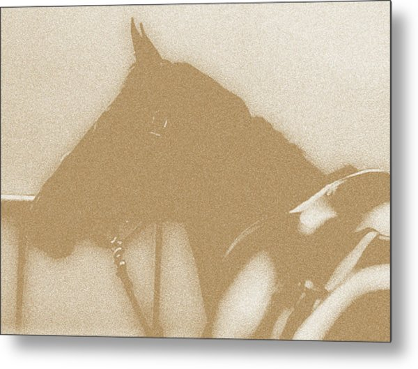 Ready To Ride Metal Print by Donna Thomas