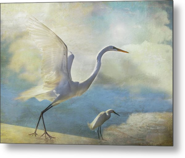 Ready To Soar Metal Print