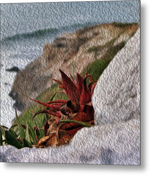 Red Aloe Vera By The Sea Metal Print