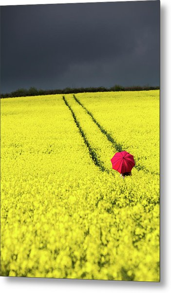 Red And Yellow And....... Metal Print