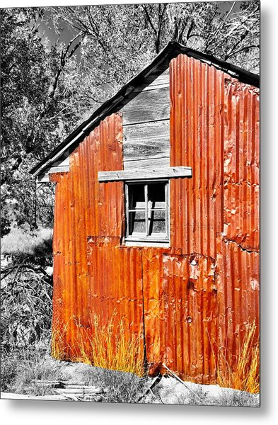 Red Armor Metal Print