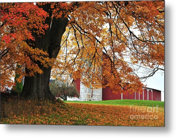 Red Barn In Autumn Metal Print