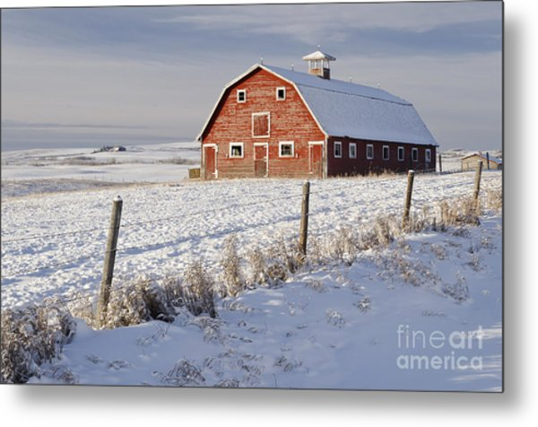 Red Barn In Winter Coat Metal Print