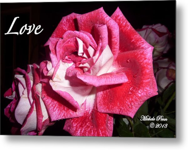 Red Beauty 3 - Love Metal Print