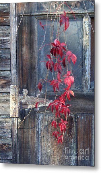 Red Metal Print by Bernadette Kazmarski