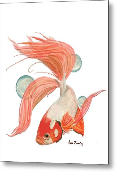 Red Beta Fish Metal Print