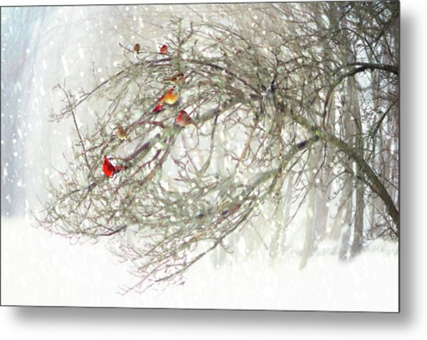 Red Bird Convention Metal Print