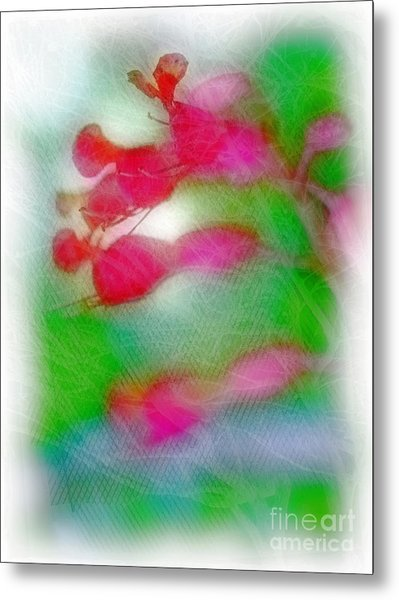 Red Buckeye Metal Print