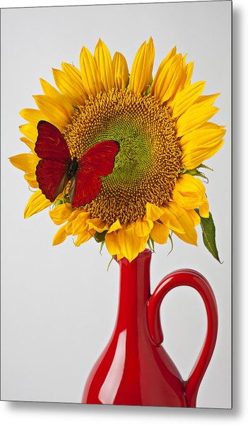 Red Butterfly On Sunflower On Red Pitcher Metal Print