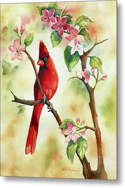 Red Cardinal And Blossoms Metal Print