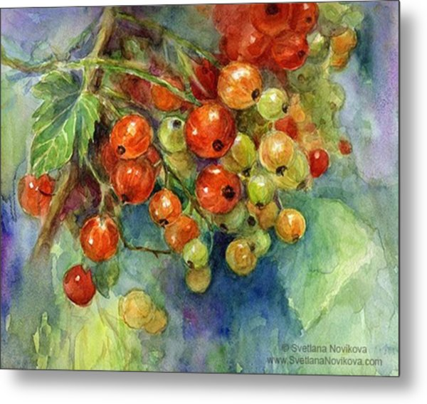 Red Currants Berries Watercolor Metal Print