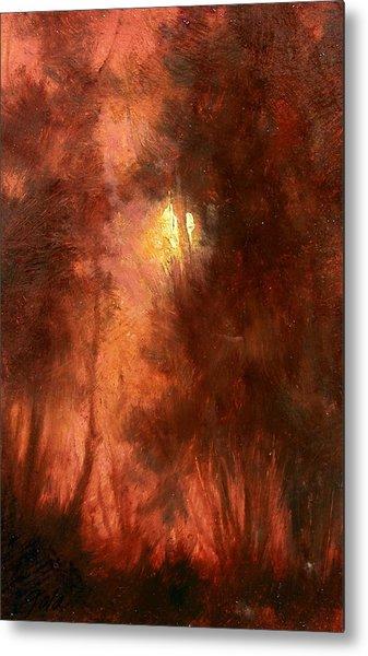 Red Dawn Ridgefield Refuge Metal Print