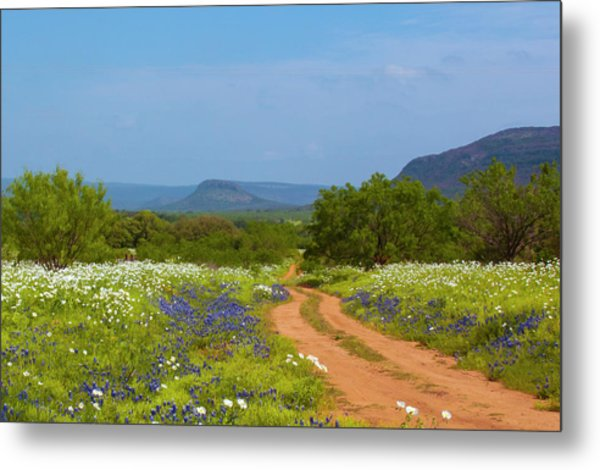 Red Dirt Road With Wild Flowers Metal Print