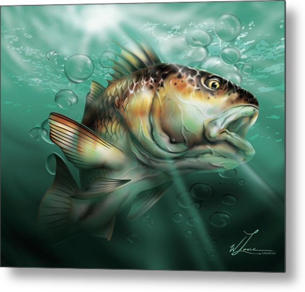 Red Drum Metal Print