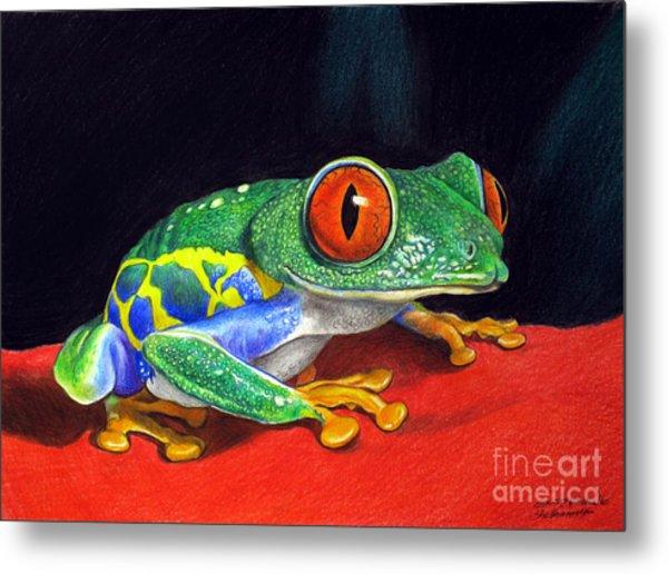 Red Eyed Tree Frog Metal Print