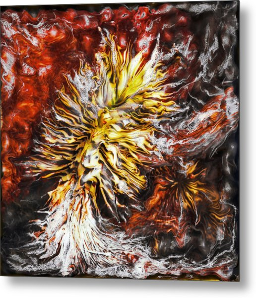 Red Flame Yucca Metal Print by Paul Tokarski