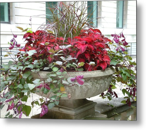 Red Foliage Metal Print by Gregory Jeffries
